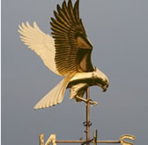 Gilt Harrier Hawk Weathervane